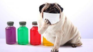 これだけやれば大丈夫!インフルエンザ予防対策|3つのポイント